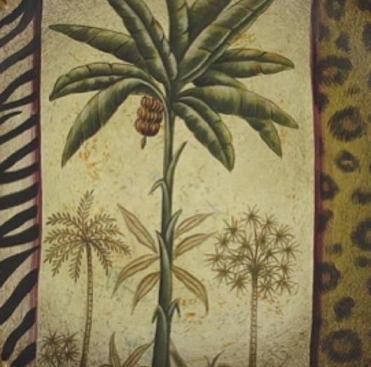 Exotic Print and Safari Animal Hide