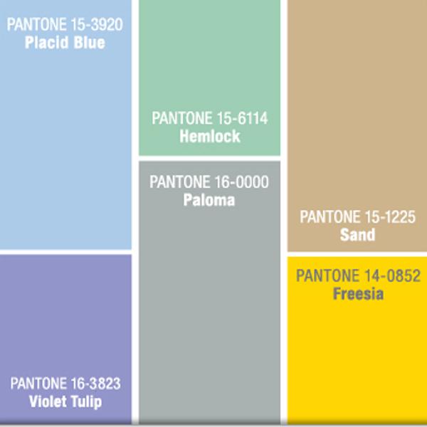 Pantone 01